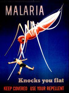 grand moustique-mondesanspalu.com